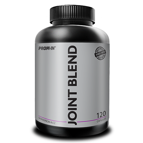 Joint Blend 120 capsules (dóza)